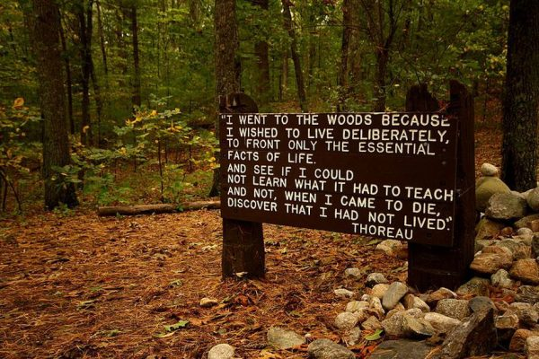 Thoreau quote near his cabin walden pond